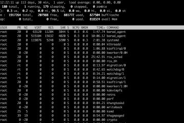 Linux 性能检测常用的 10 个基本命令